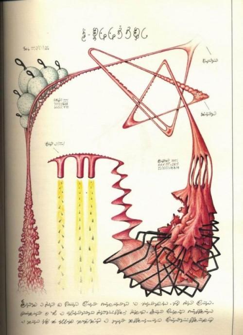 codex_seraphinianus_04-594x818
