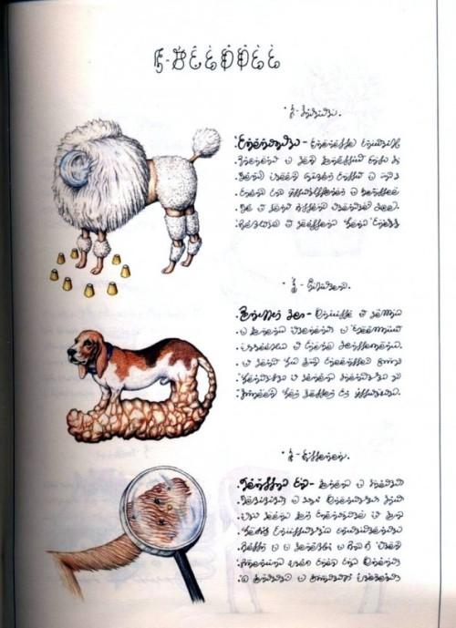 codex_seraphinianus_07-594x819