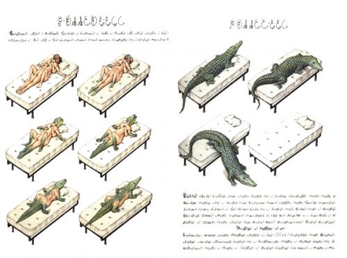 codex_seraphinianus_12-594x442
