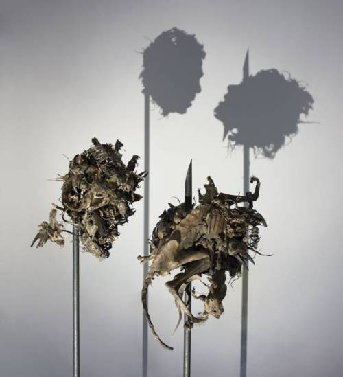 Tim_Noble_Sue_Webster_shadow_sculpture_9-normal